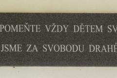 DSCN6753 (800x293)